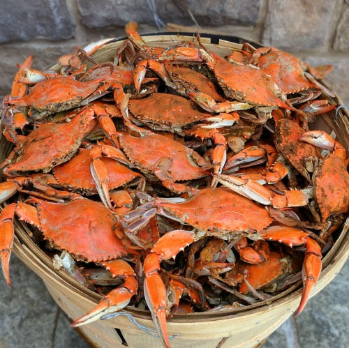 #2marylandcrabs